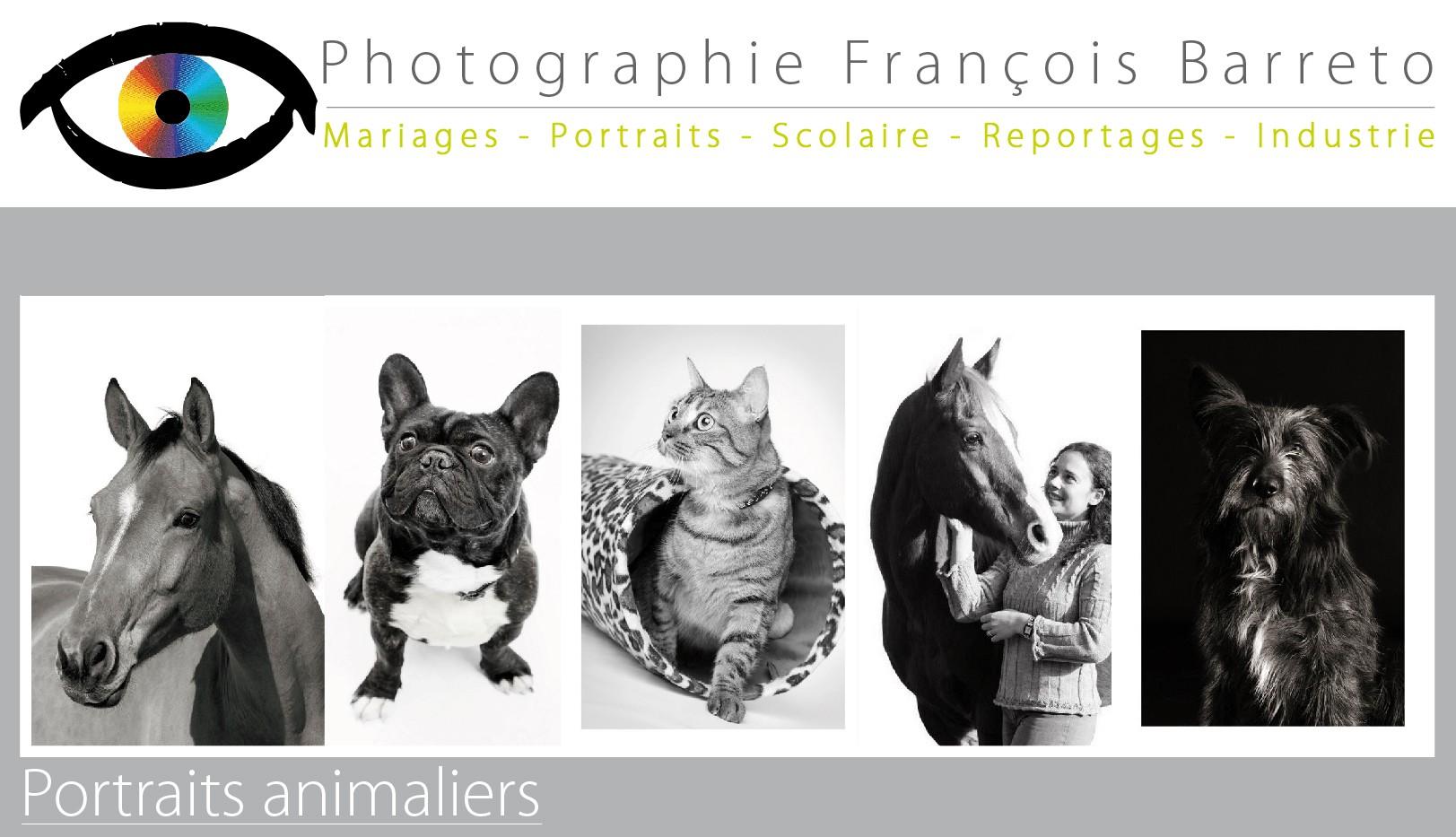 Portraits animaliers
